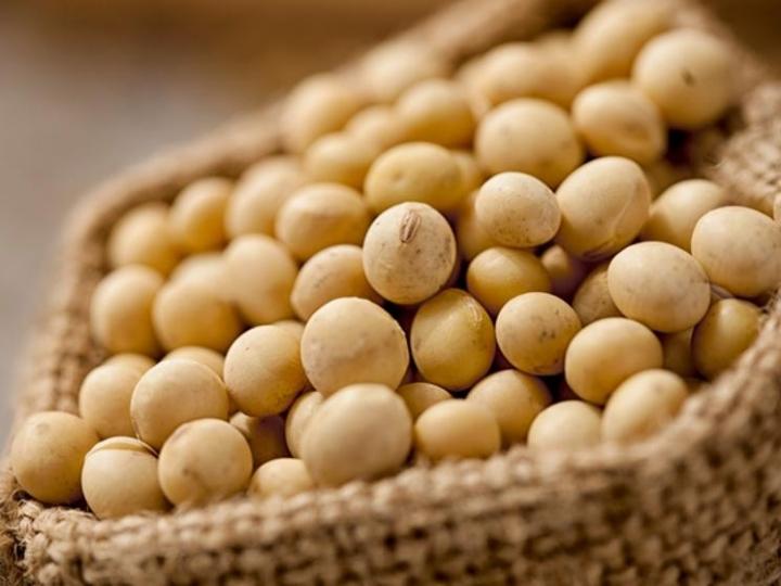 BASF lança variedades de soja na Tecnoshow Comigo