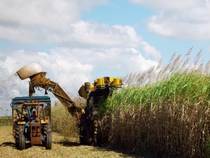 Lideranças do setor sucroenergético discutem o futuro do biocombustível