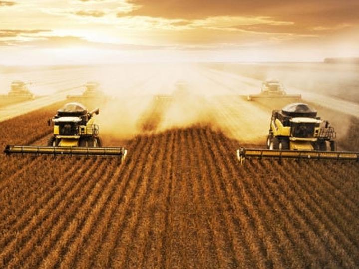 Tecnologia inovadora para análise de grãos em tempo real diretamente na colheitadeira será apresentada na Agrishow