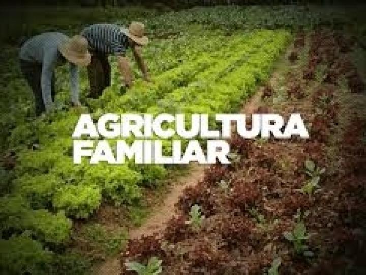 15 milhões de reais para compra de alimentos da agricultura familiar