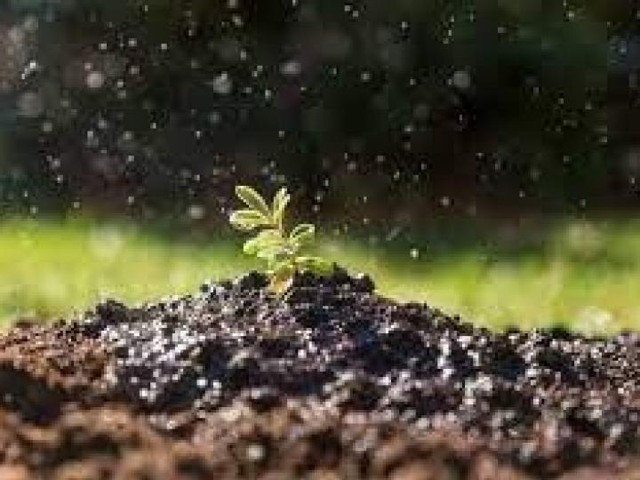 Conservação do solo: porque precisamos falar disso