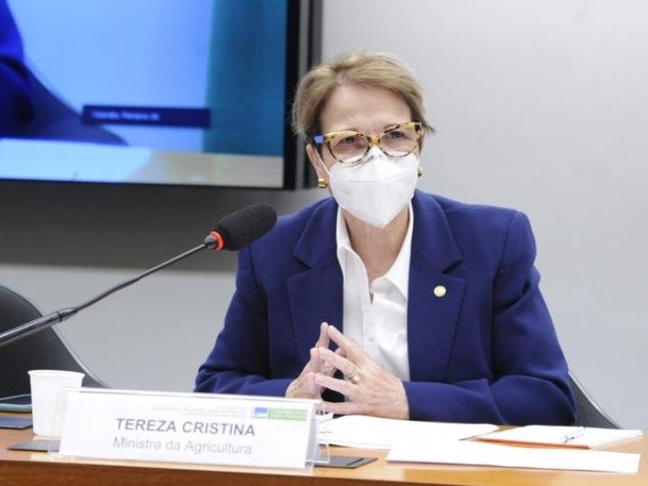 Ministra fala sobre prioridades para o próximo Plano Safra