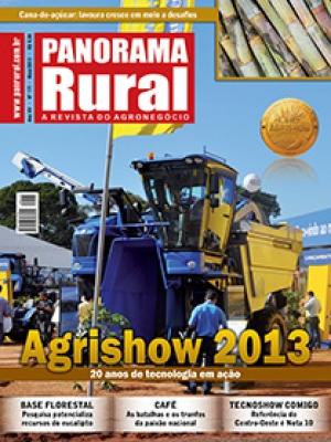 Edição 171 - Maio 2013