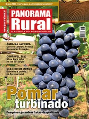 Edição 168 - Fevereiro 2013