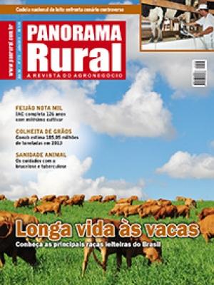 Edição 173 - Julho 2013