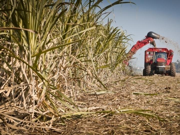 Vendas de etanol superam 5 bilhões de litros no primeiro bimestre de 2019