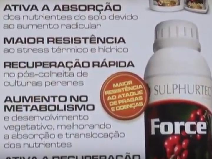 Sulphurtec Fertilizantes 2017