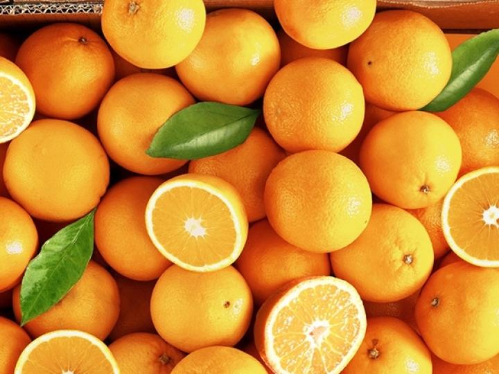 Exportações de suco de laranja registraram queda de 13% nos nove primeiros meses da safra 2018/2019