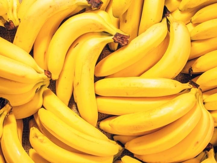 Biotecnologia pode evitar a extinção da banana