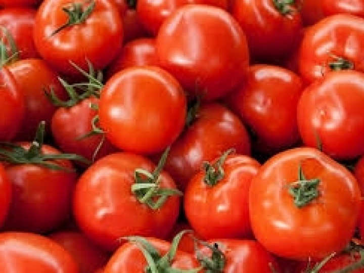 Tomate pode ficar mais barato em maio