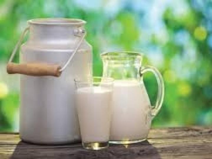 Preço do leite sobe no RS