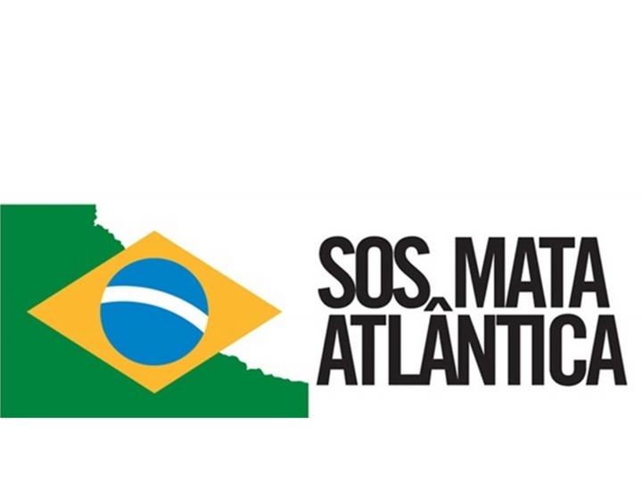 Scania anuncia parceria com a Fundação SOS Mata Atlântica