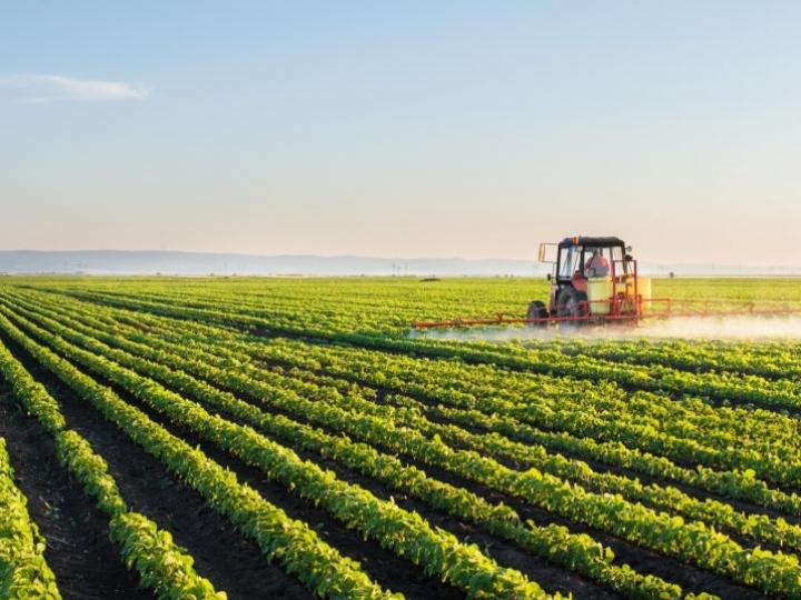 Conab debate estratégias para a agricultura mundial com países integrantes do G20 na Itália
