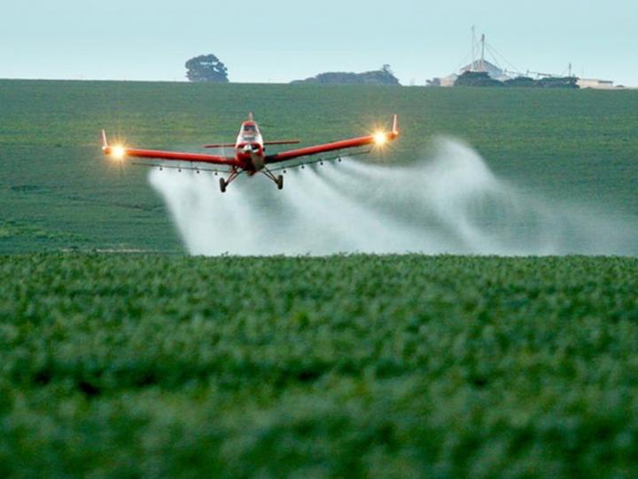 Governo federal aprova registro de mais 31 agrotóxicos