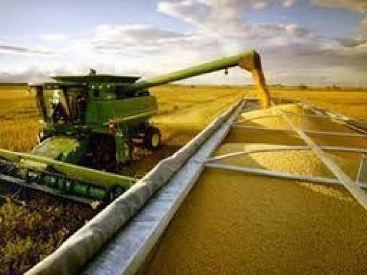 DataSafra fornece informações para planejamento assertivo da cadeia produtiva da soja e do milho