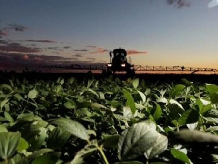 Dia 30 de junho é o prazo para fabricantes e comerciantes de defensivos agrícolas se cadastrarem no GEDAVE