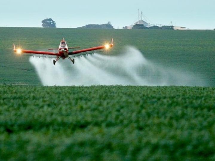 Ministério da Agricultura aprova registro de mais 42 agrotóxicos, totalizando 211 no ano