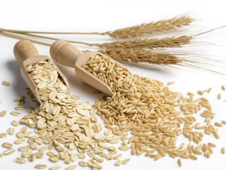 Levantamento da Conab indica que Brasil deve produzir 238,9 milhões de toneladas de grãos