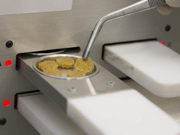 Testes de qualidade da borracha orientam o melhoramento genético da seringueira. Foto: Flávio Ubiali