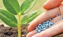 Congresso ANDAV reúne especialistas para debater sobre os novos rumos da distribuição de insumos agropecuários no Brasil