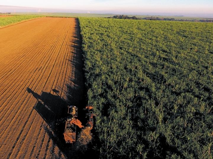 Maior produção e venda de etanol na safra 2019/2020
