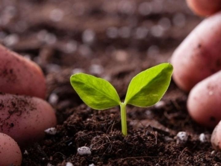 Agência Espacial Europeia reconhece importância do sensoriamento remoto para solos