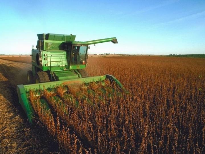 MAPFRE alerta para contratação de Seguro Rural para safra de grãos do verão