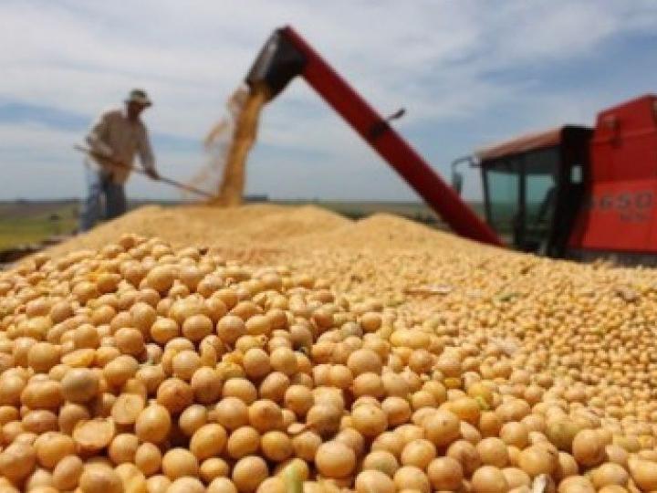 Safra recorde de grãos deve chegar a 240,7 milhões t