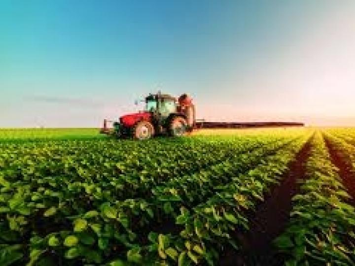 CNA prevê crescimento de 0,1% no valor bruto da produção em 2019