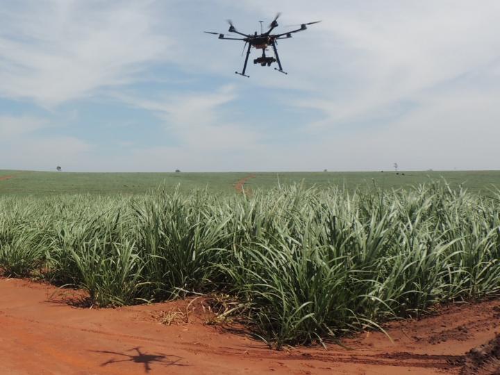 Drones devem substituir aeronaves na pulverização agrícola dentro de poucos anos