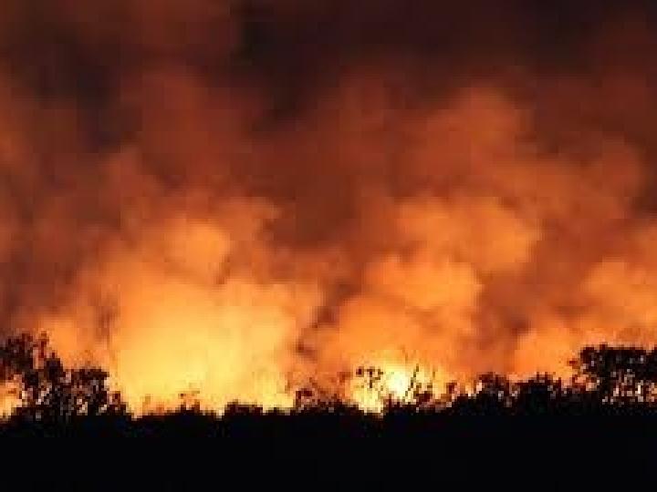 Uso do fogo fica proibido por 60 dias em todo território nacional