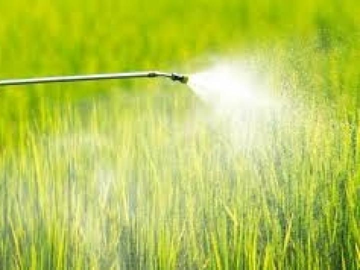 Estudo constata que Japão é o maior usuário mundial de defensivo agrícola