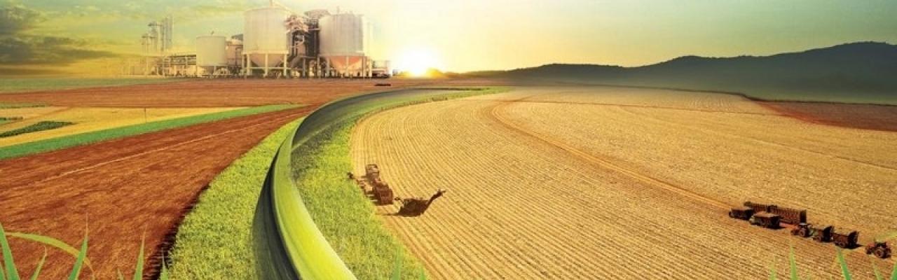 O setor sucroenergético está entre os emissores com maior capacidade de geração de CBIO. Foto: Divulgação