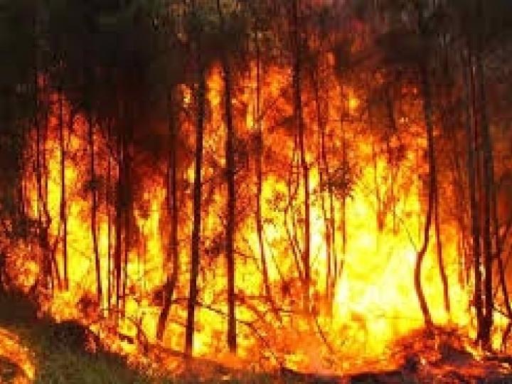 Biosev leva Programa de Combate a Incêndios a escolas