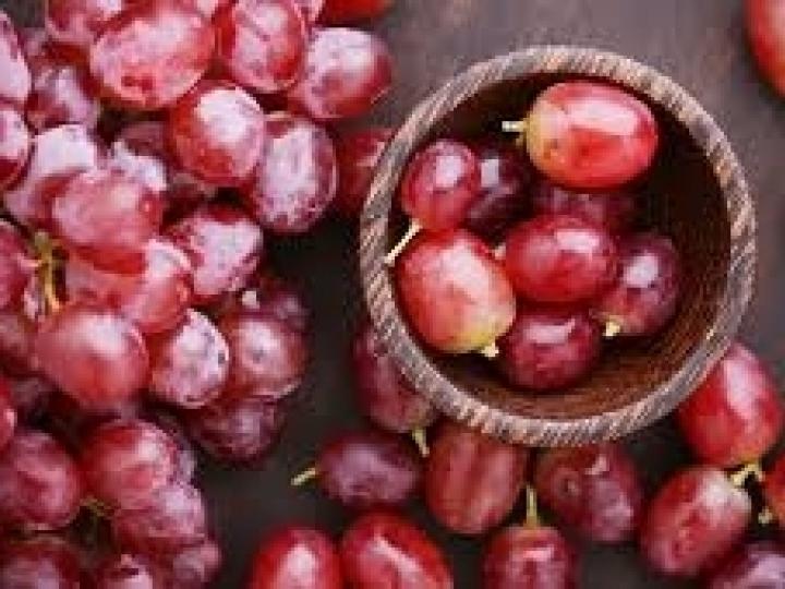 Nova cultivar de uva pode ganhar espaço