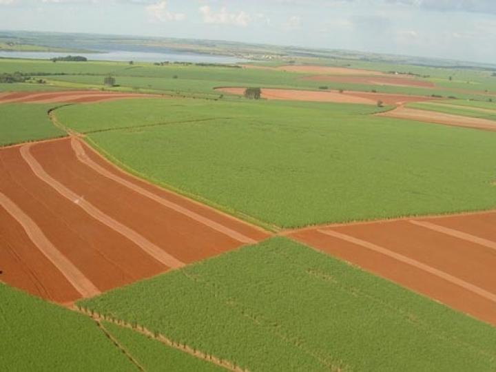 Alta da produtividade agrícola na safra 2019/2020 segue neutralizada