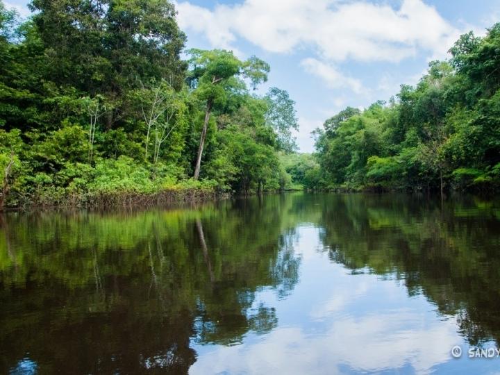 Campanha Seja Legal com a Amazônia