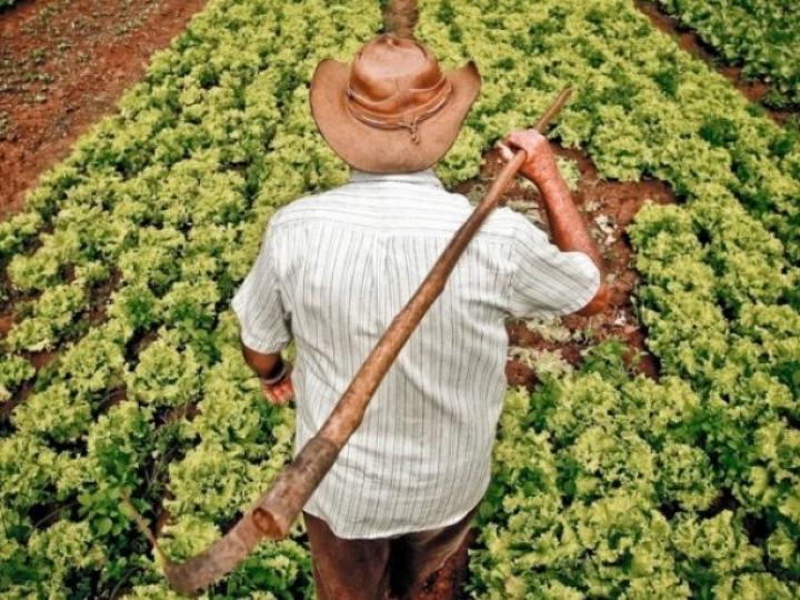 Eventos que promovem o acesso a mercados dos produtos da agricultura familiar