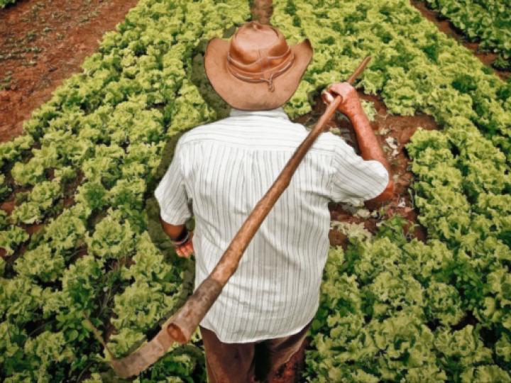 AgroNordeste: R$ 5 milhões para formação de estoques da agricultura familiar