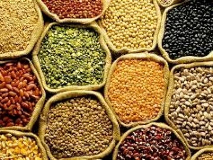 Safra de grãos 2019/2020 indica produção de 245,8 mi