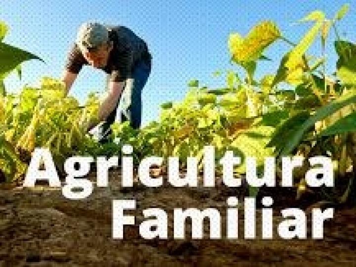 Propostas de Formação de Estoques da agricultura familiar