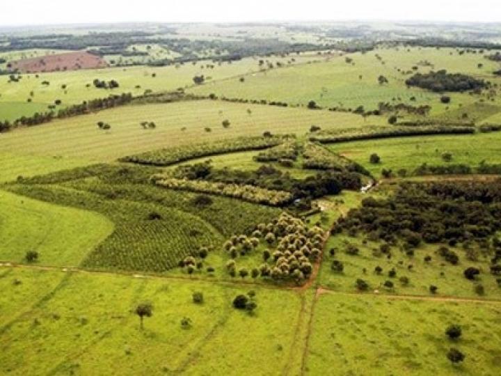 SRB defende flexibilização em PL de venda de terras para estrangeiros