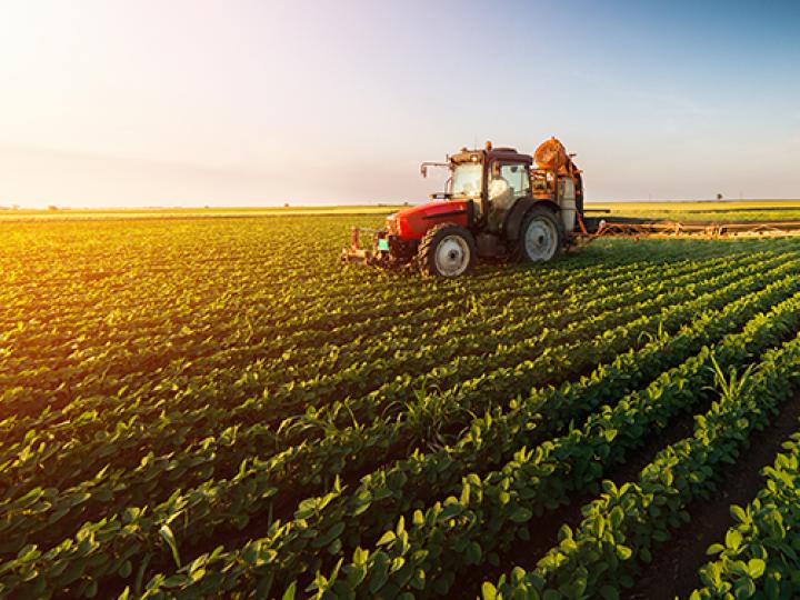 Valor da Produção Agropecuária de 2019 sobe para R$ 606,2 bilhões