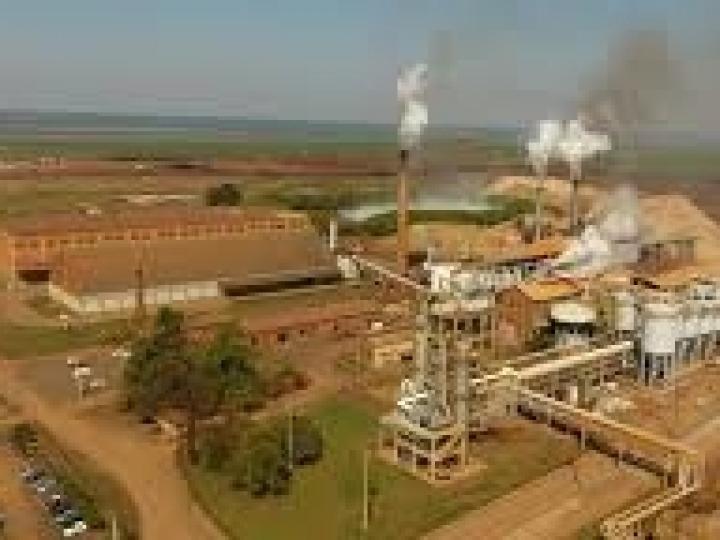 Usina Santa Fé pagará R$ 1,5 milhão de indenização coletiva por morte de trabalhadores
