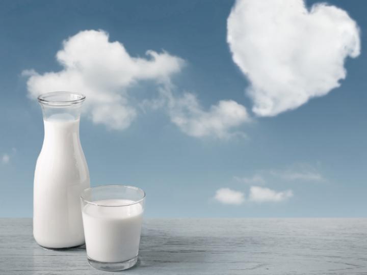 Preço do leite tem leve elevação em novembro