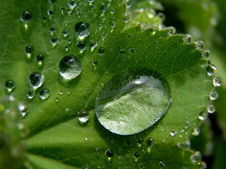 Avanço tecnológico dos fertilizantes especiais