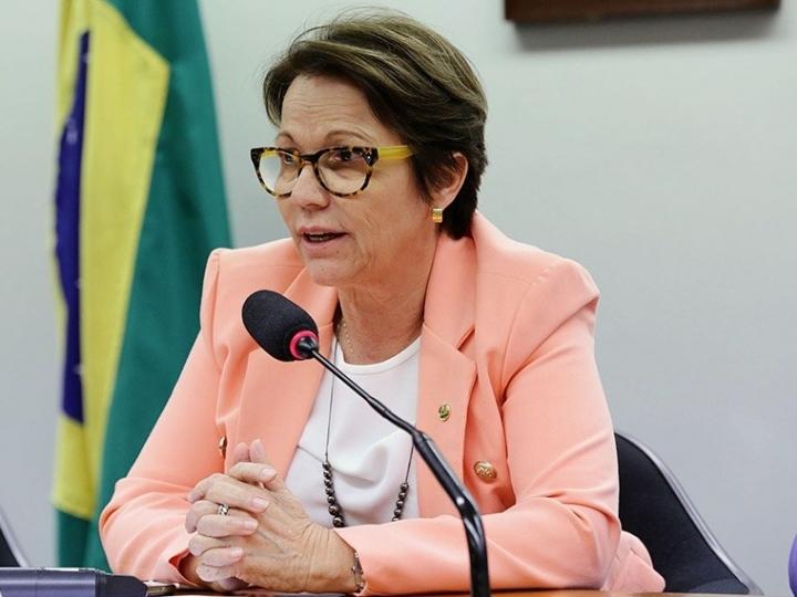 Ministra destaca que prioridade da agropecuária é abastecer mercado interno