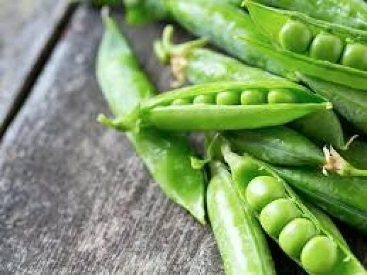 Vagem: Um alimento com baixo valor calórico e rico em proteínas