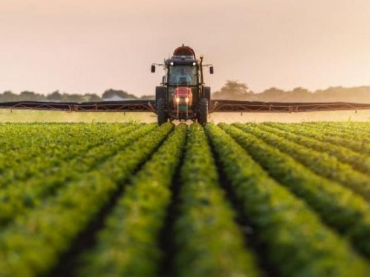 Agropecuária de 2019 é estimado em R$ 617 bilhões