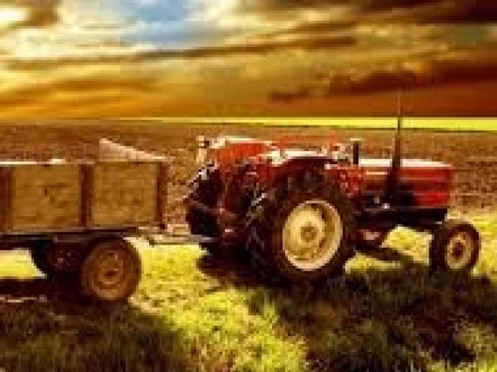 Agropecuária é o setor com maior alta do PIB no terceiro trimestre do ano